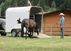 Foto 4 - Lasciamo studiare al cavallo la pedana, prima di affrontarla. Gli risulterà più semplice attraversarla trasversalmente all'inizio.