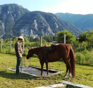 Foto 6 - Ricompensiamo lo sforzo del cavallo con un momento di relax. Abbineremo all'ostacolo una sensazione di riposo e relax.