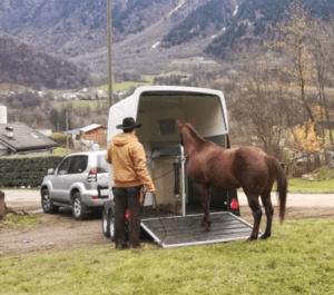 Foto 7 - Non preoccupiamoci inizialmente di dove vorrà salire il cavallo. Lasciamogli scegliere che ritiene più sicuro.