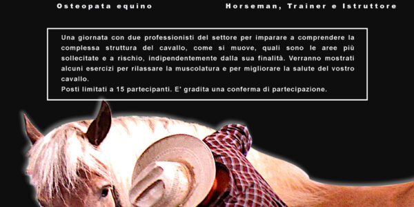 15 NOVEMBRE 2020 – LO STRETCHING DEL CAVALLO – OSCO (SVIZZERA)