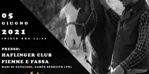 5 GIUGNO 2021 – HAFLINGER CLUB – CAVALESE (TN)